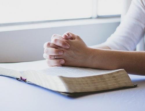 Como combater a injustiça? A Palavra de Deus nos mostra o caminho