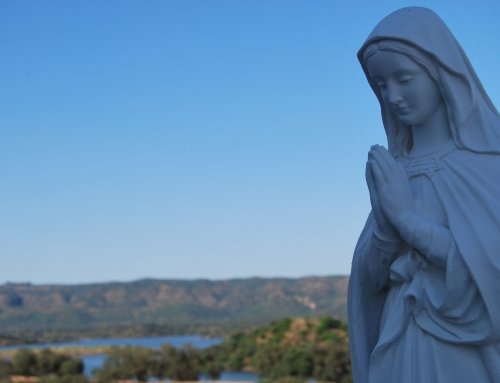 A importância de confiar suas preocupações à Virgem Maria